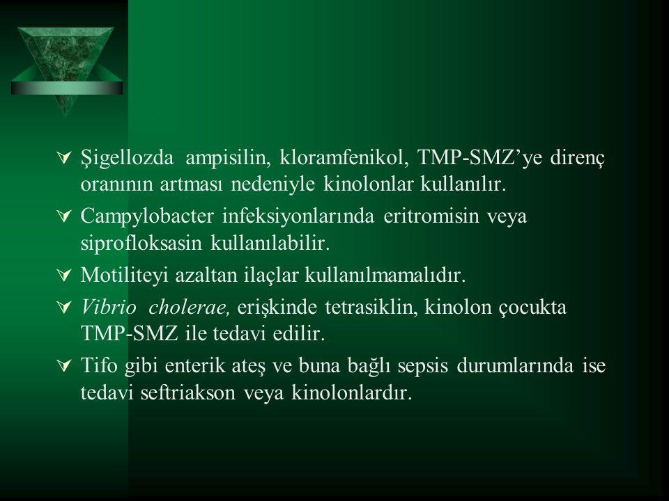 Şigellozda ampisilin, kloramfenikol, TMP-SMZ'ye direnç oranının artması nedeniyle kinolonlar kullanılır.
