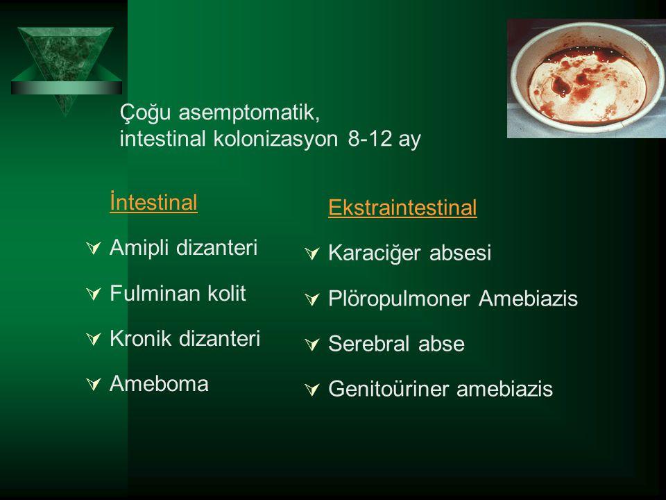 Çoğu asemptomatik, intestinal kolonizasyon 8-12 ay