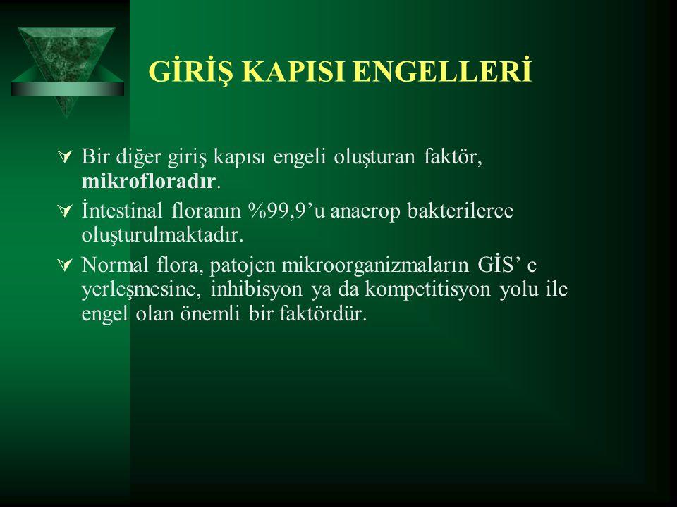 GİRİŞ KAPISI ENGELLERİ
