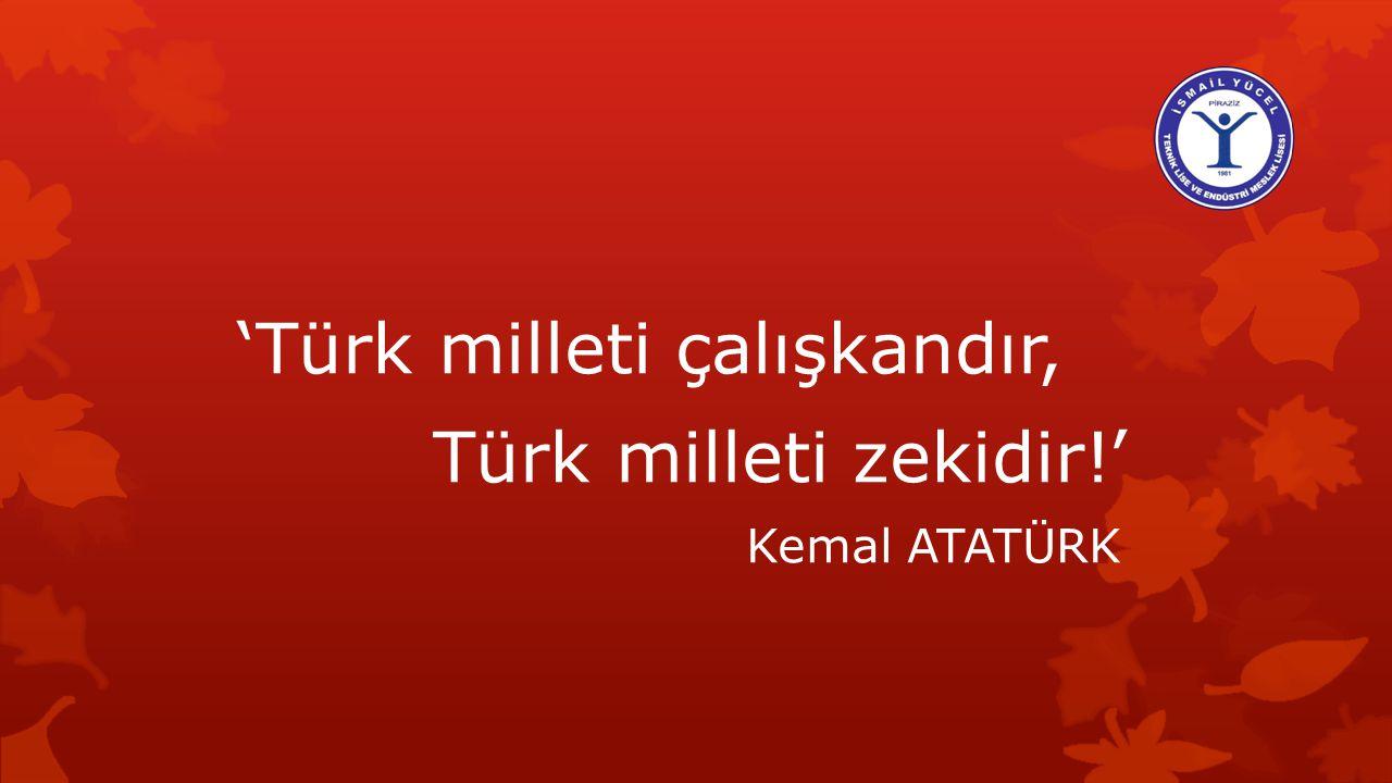 'Türk milleti çalışkandır, Türk milleti zekidir!'