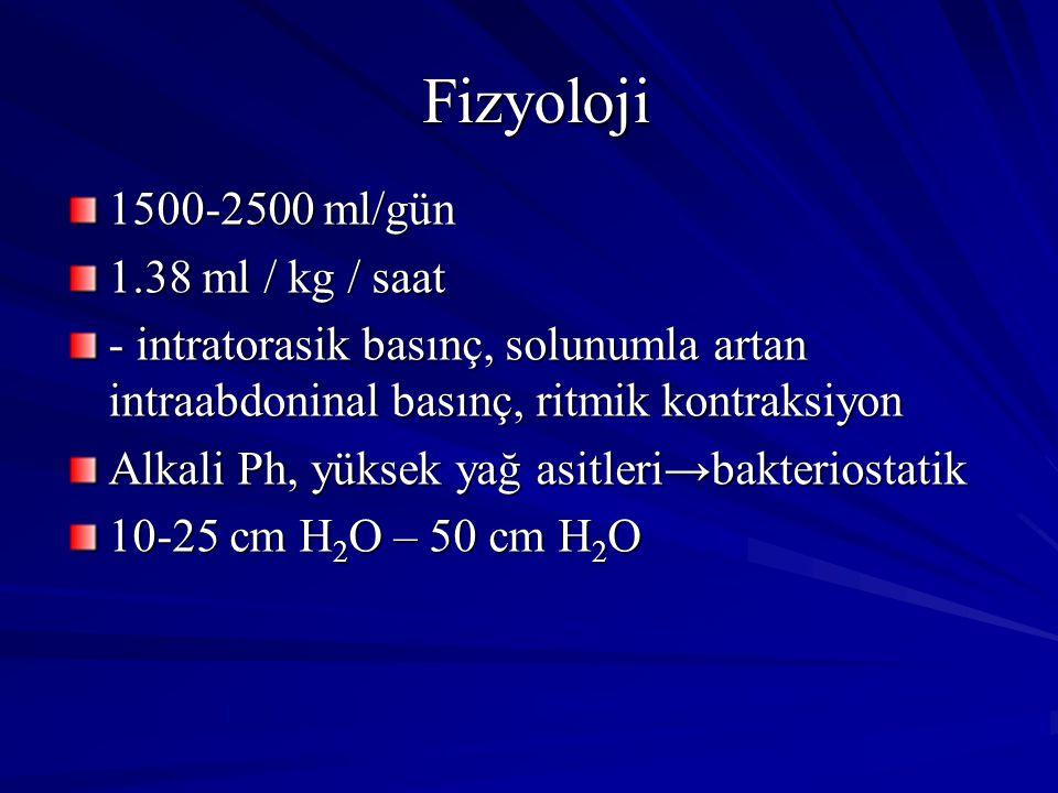 Fizyoloji 1500-2500 ml/gün 1.38 ml / kg / saat