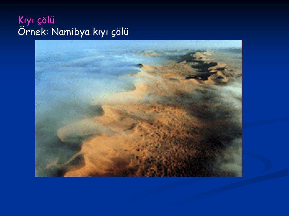 Kıyı çölü Örnek: Namibya kıyı çölü