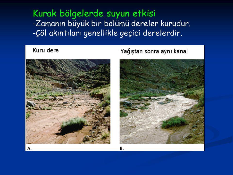 Kurak bölgelerde suyun etkisi