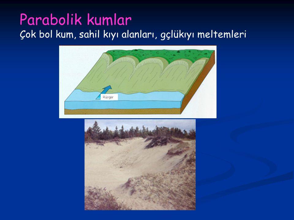 Parabolik kumlar Çok bol kum, sahil kıyı alanları, gçlükıyı meltemleri