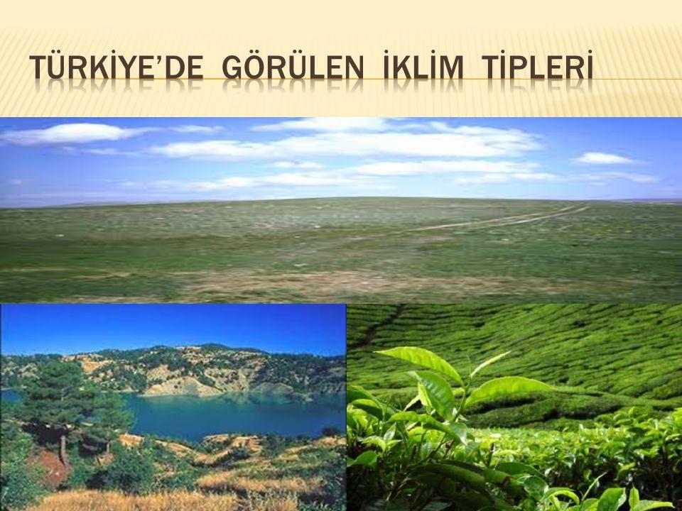 Türkİye'de görülen İklİm tİplerİ