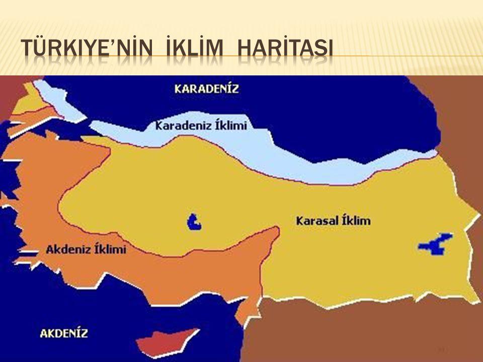Türkiye'nİn İKLİM HARİTASI