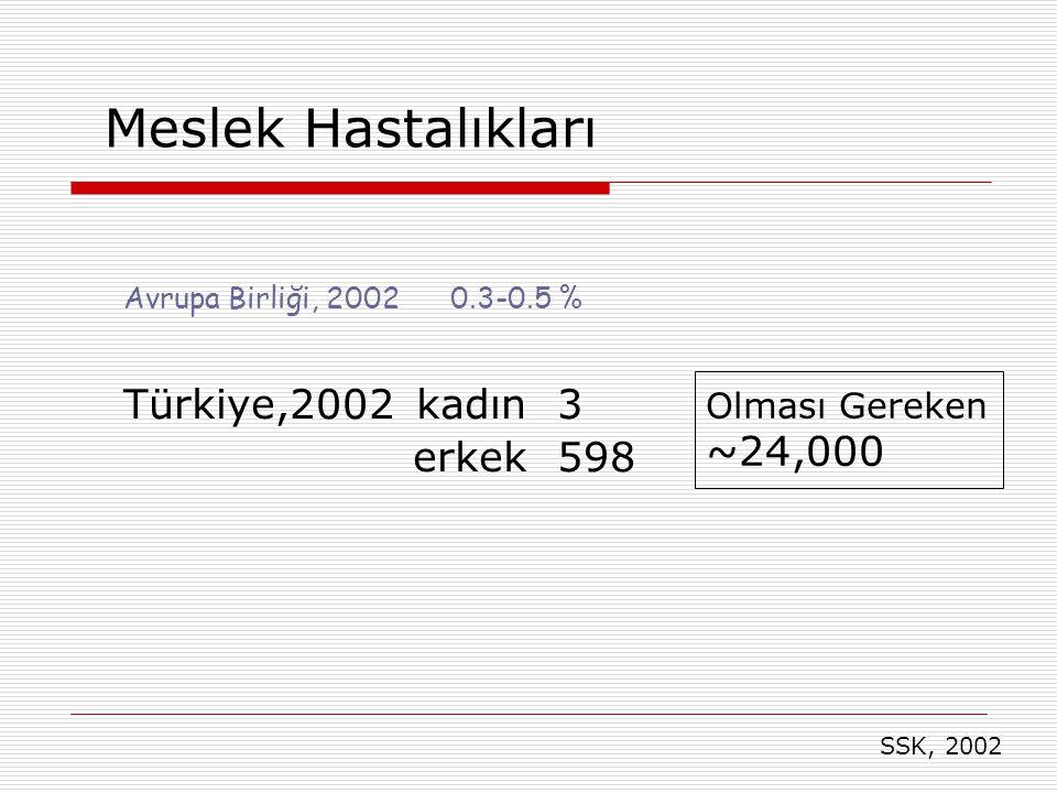 Meslek Hastalıkları Türkiye,2002 kadın 3 erkek 598