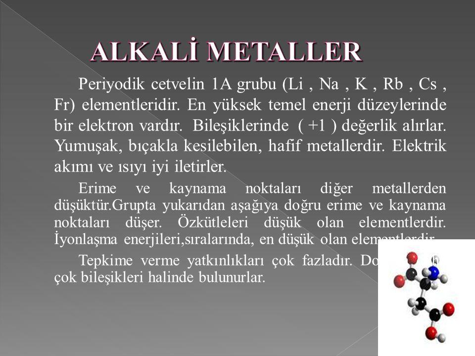 ALKALİ METALLER