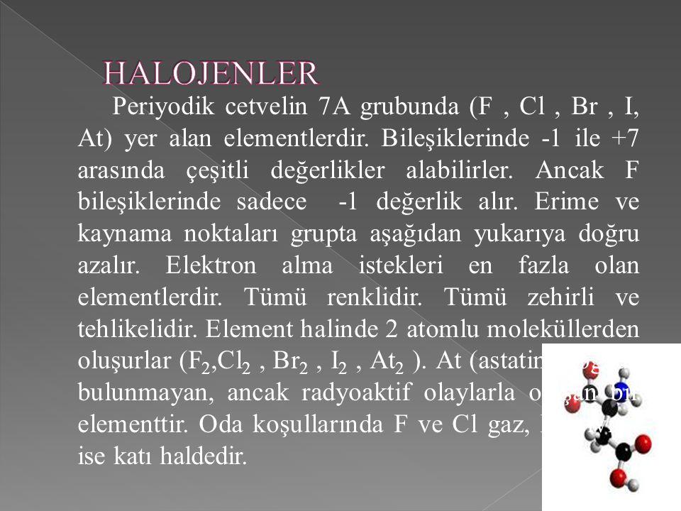 HALOJENLER