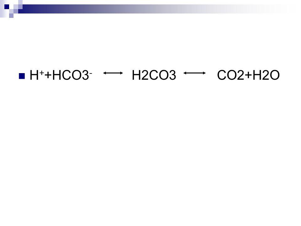 H++HCO3- H2CO3 CO2+H2O