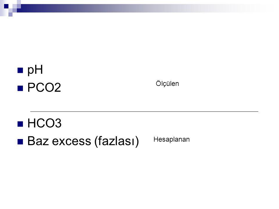 pH PCO2 HCO3 Baz excess (fazlası) Ölçülen Hesaplanan