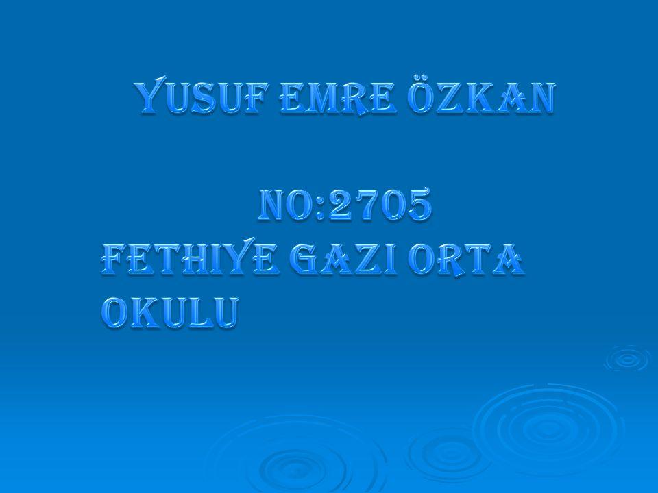 Yusuf Emre Özkan No:2705 Fethiye Gazi Orta Okulu