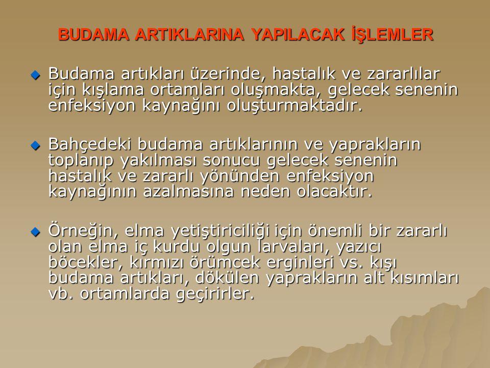 BUDAMA ARTIKLARINA YAPILACAK İŞLEMLER