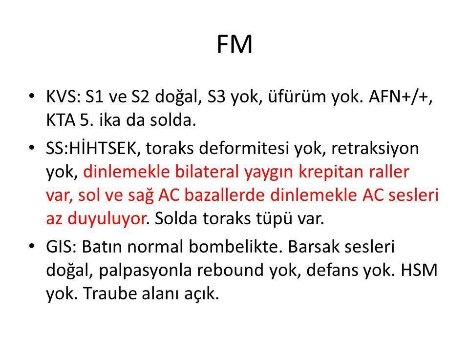 FM KVS: S1 ve S2 doğal, S3 yok, üfürüm yok. AFN+/+, KTA 5. ika da solda.