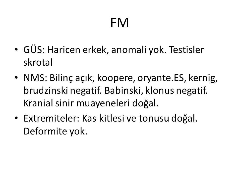 FM GÜS: Haricen erkek, anomali yok. Testisler skrotal