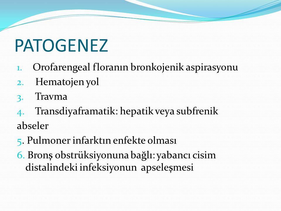 PATOGENEZ Orofarengeal floranın bronkojenik aspirasyonu Hematojen yol