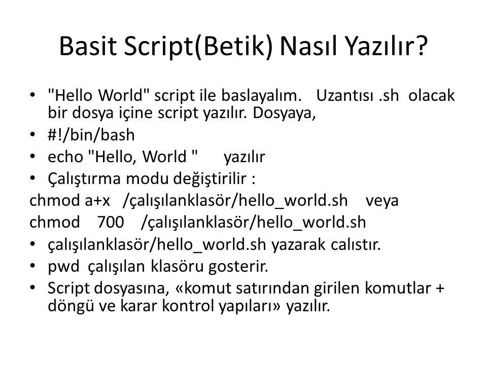Basit Script(Betik) Nasıl Yazılır