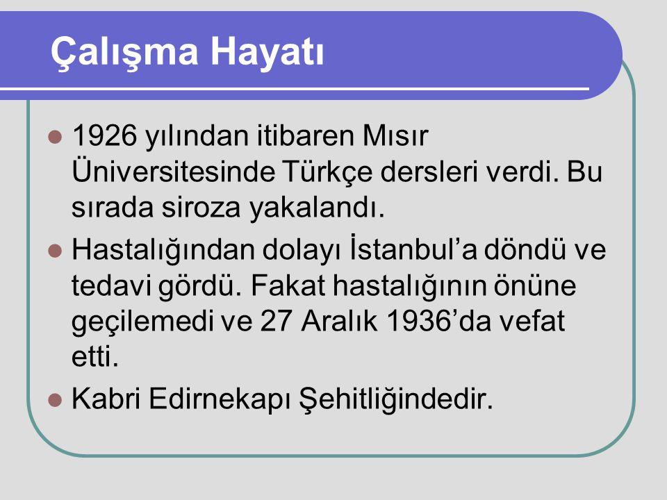 Çalışma Hayatı 1926 yılından itibaren Mısır Üniversitesinde Türkçe dersleri verdi. Bu sırada siroza yakalandı.