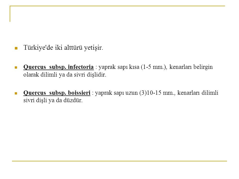 Türkiye de iki alttürü yetişir.