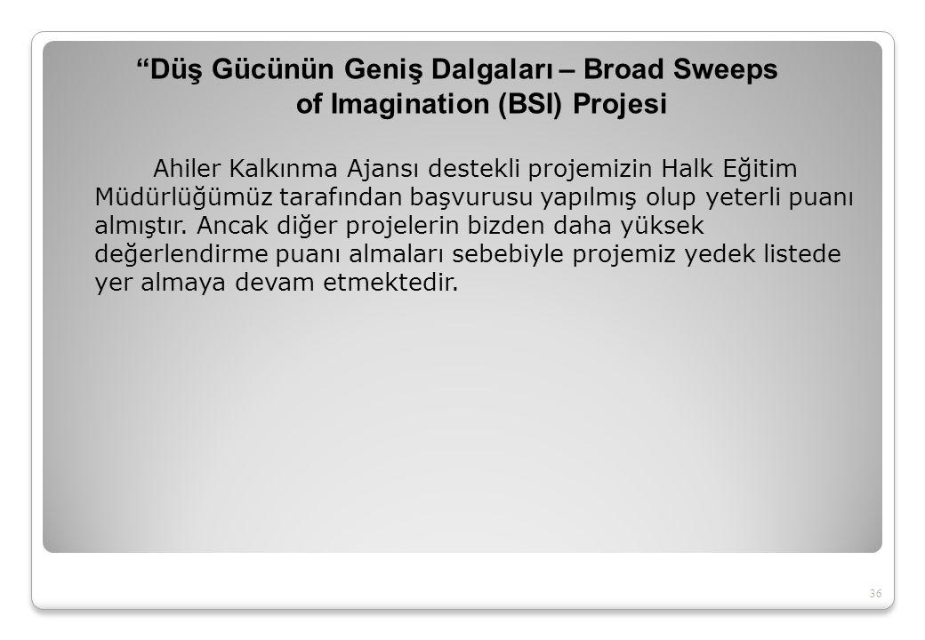 2011 Grundtving Öğrenme Ortaklığı Projesi