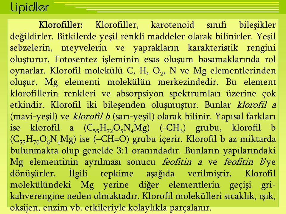 Klorofiller: Klorofiller, karotenoid sınıfı bileşikler değildirler