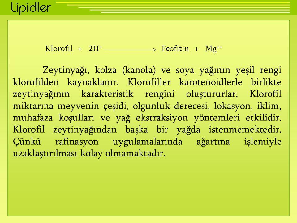 Klorofil + 2H+ Feofitin + Mg++