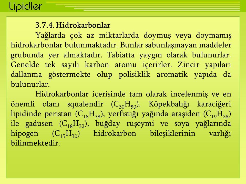 3.7.4. Hidrokarbonlar
