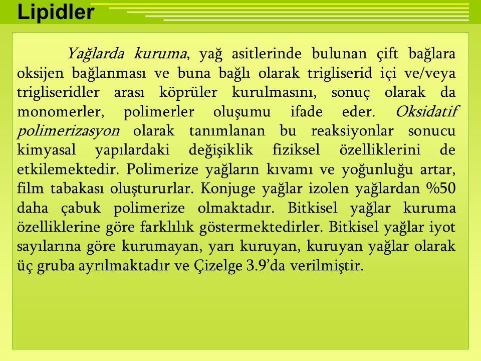 Lipidler