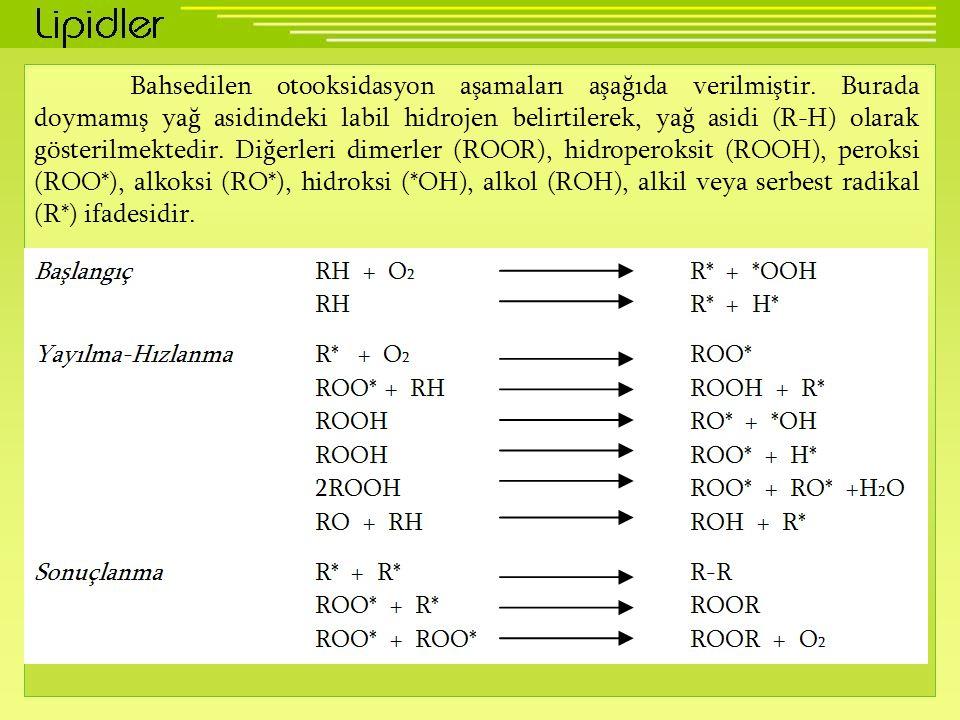 Bahsedilen otooksidasyon aşamaları aşağıda verilmiştir