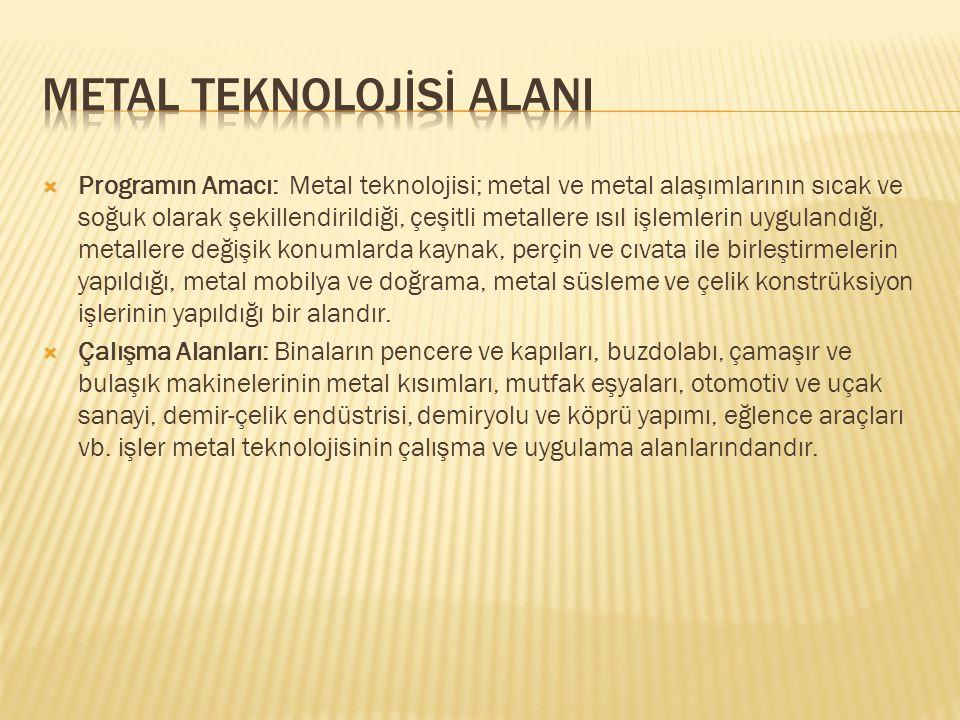 METAL TEKNOLOJİSİ ALANI