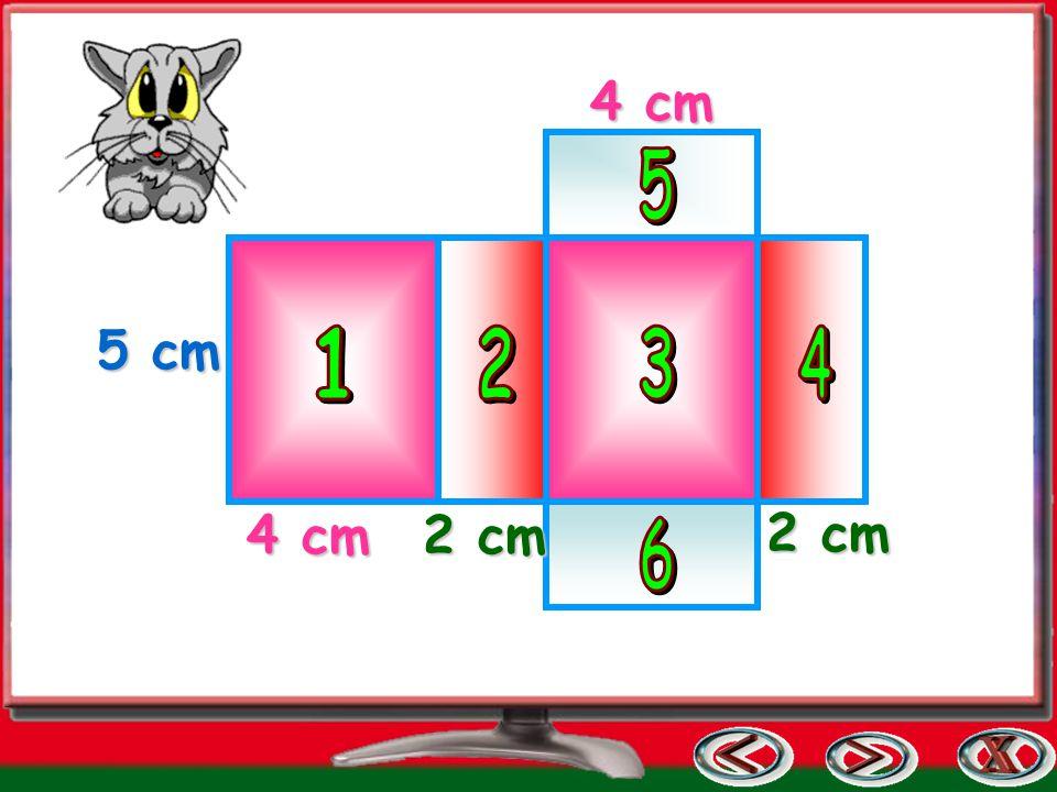 4 cm 5 1 2 3 4 5 cm 4 cm 2 cm 6 2 cm
