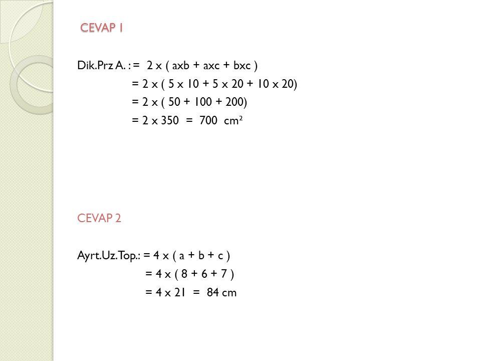 CEVAP 1