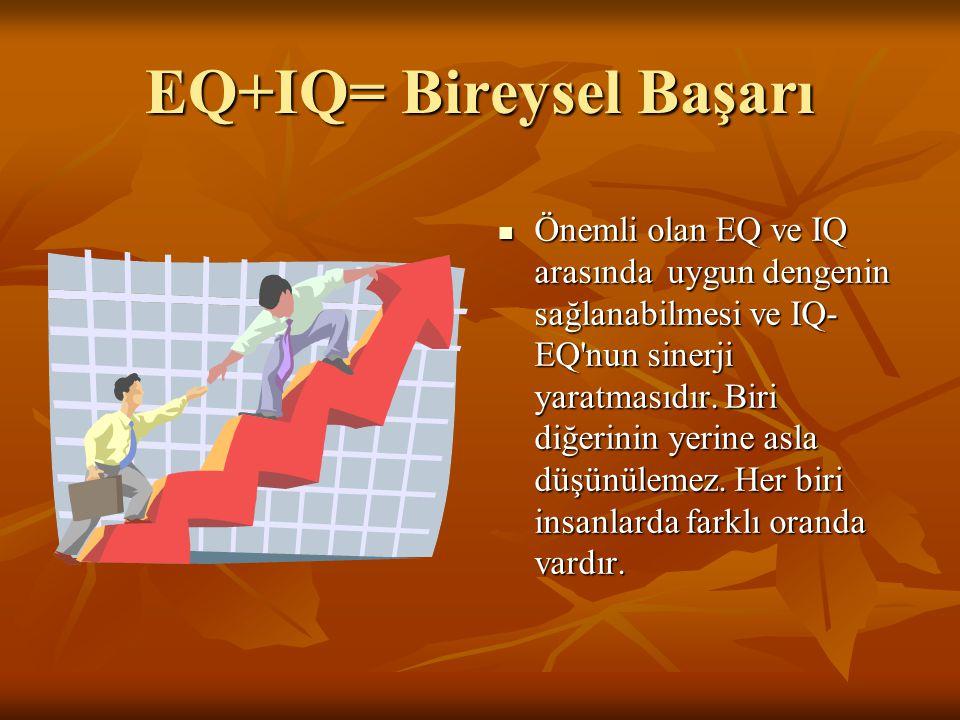 EQ+IQ= Bireysel Başarı
