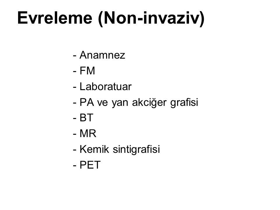 Evreleme (Non-invaziv)