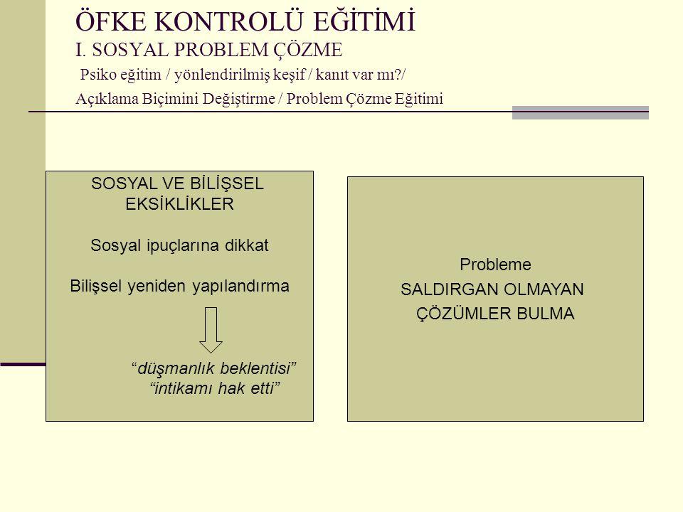 ÖFKE KONTROLÜ EĞİTİMİ I