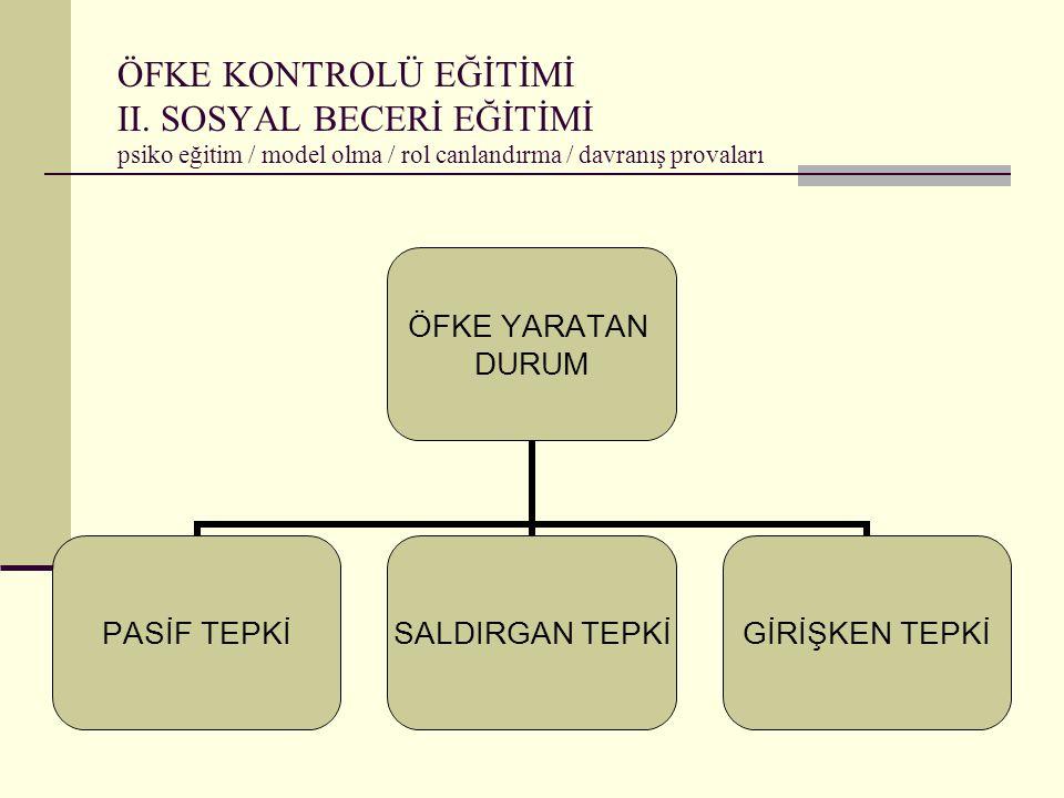 ÖFKE KONTROLÜ EĞİTİMİ II