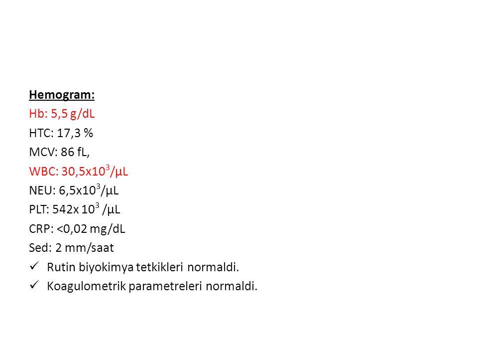 Hemogram: Hb: 5,5 g/dL. HTC: 17,3 % MCV: 86 fL, WBC: 30,5x103/μL. NEU: 6,5x103/μL. PLT: 542x 103 /μL.