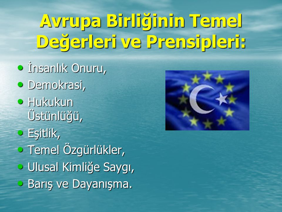 Avrupa Birliğinin Temel Değerleri ve Prensipleri: