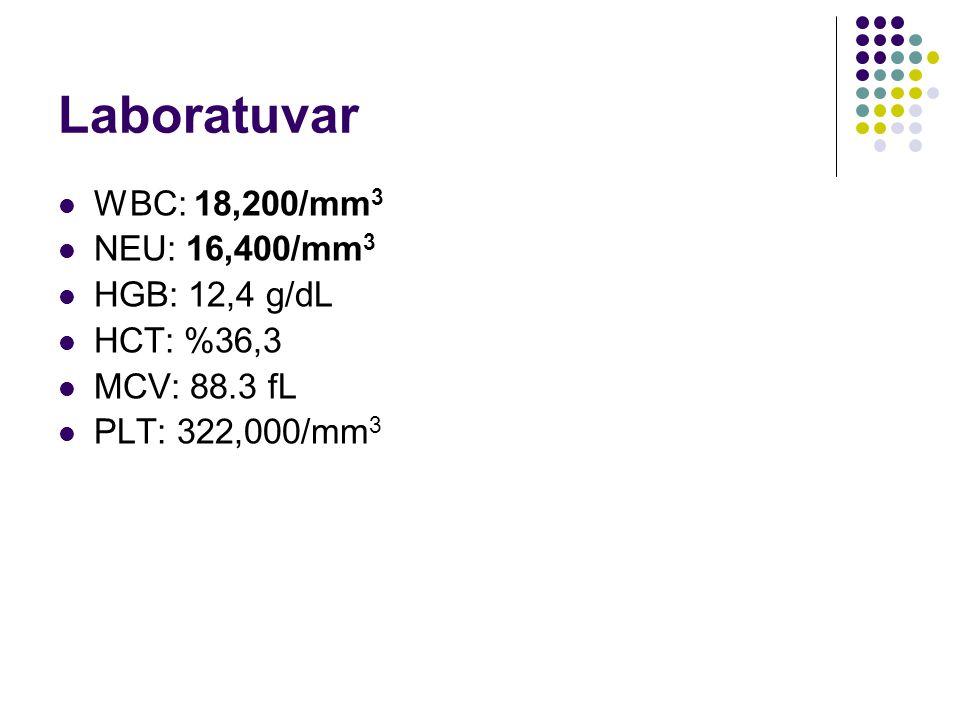 Laboratuvar WBC: 18,200/mm3 NEU: 16,400/mm3 HGB: 12,4 g/dL HCT: %36,3