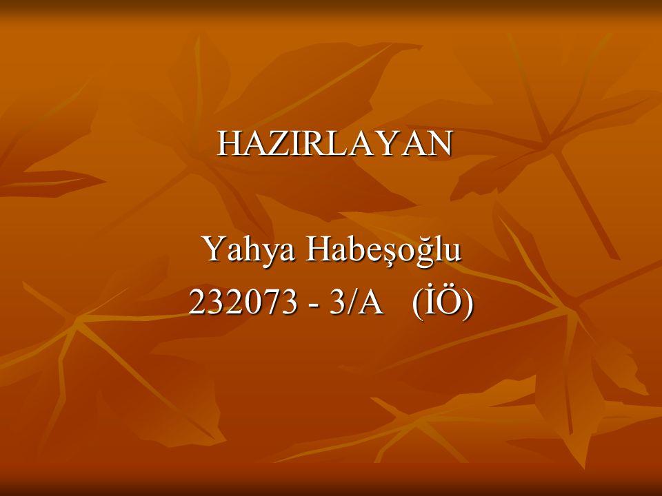 HAZIRLAYAN Yahya Habeşoğlu 232073 - 3/A (İÖ)
