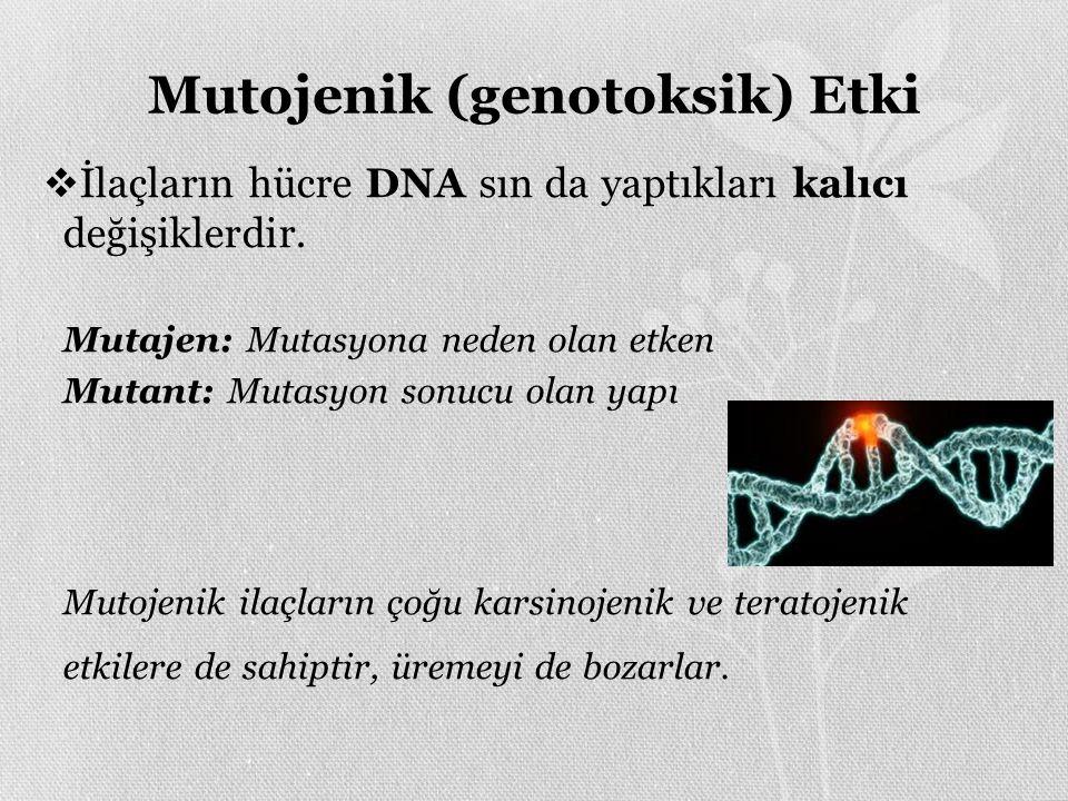 Mutojenik (genotoksik) Etki