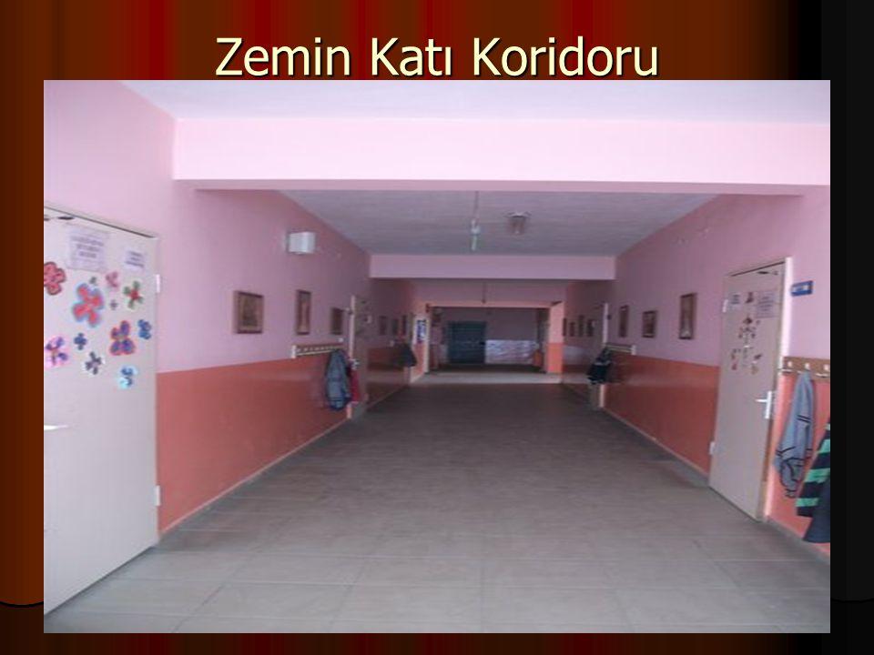 Zemin Katı Koridoru