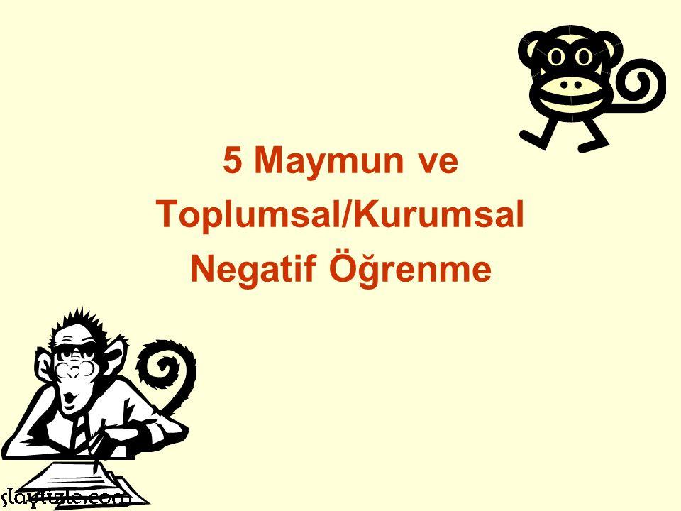 5 Maymun ve Toplumsal/Kurumsal Negatif Öğrenme