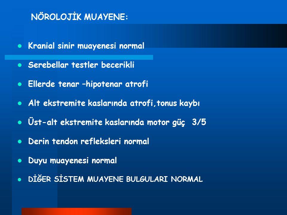 Kranial sinir muayenesi normal Serebellar testler becerikli