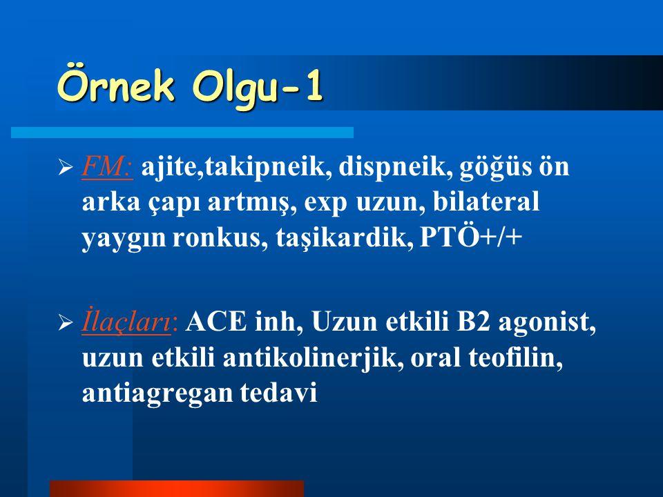 Örnek Olgu-1 FM: ajite,takipneik, dispneik, göğüs ön arka çapı artmış, exp uzun, bilateral yaygın ronkus, taşikardik, PTÖ+/+