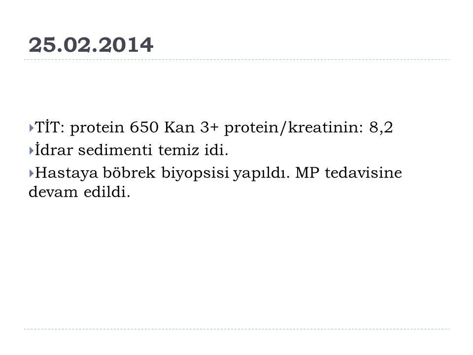 25.02.2014 TİT: protein 650 Kan 3+ protein/kreatinin: 8,2