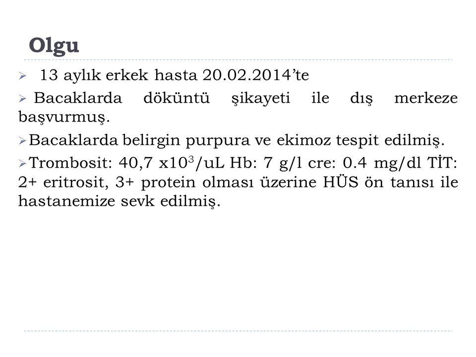 Olgu 13 aylık erkek hasta 20.02.2014'te