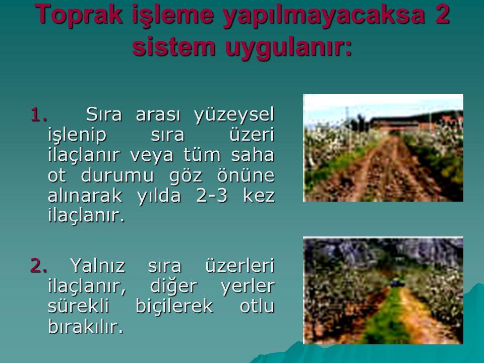 Toprak işleme yapılmayacaksa 2 sistem uygulanır: