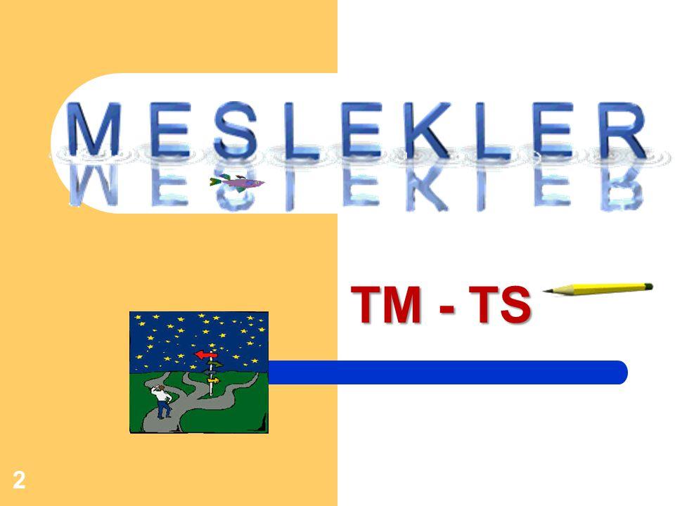 TM - TS
