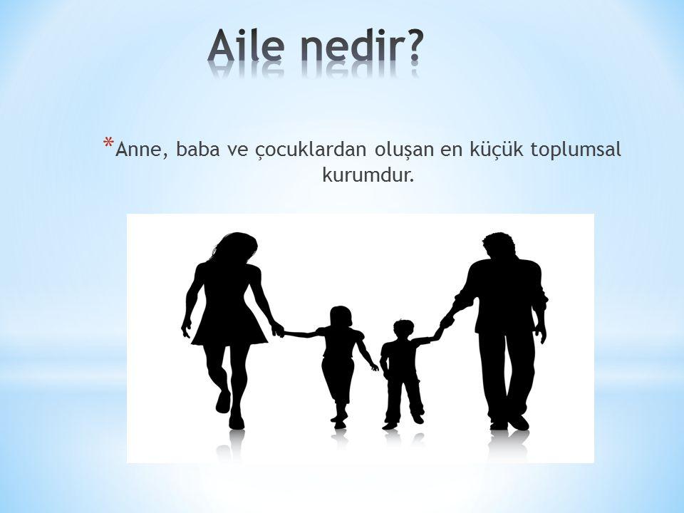 Anne, baba ve çocuklardan oluşan en küçük toplumsal kurumdur.